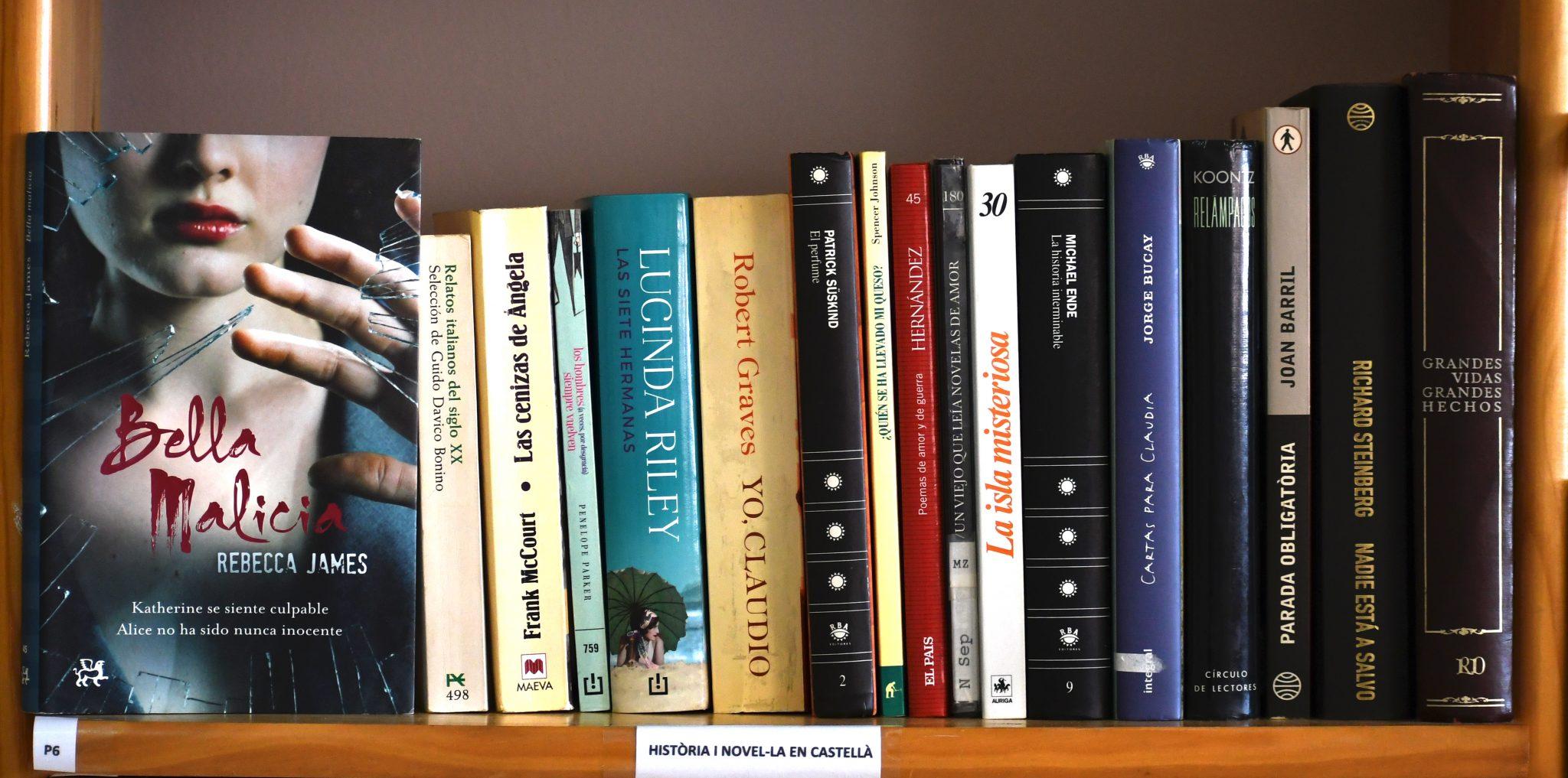 Història i novel·la en castellà