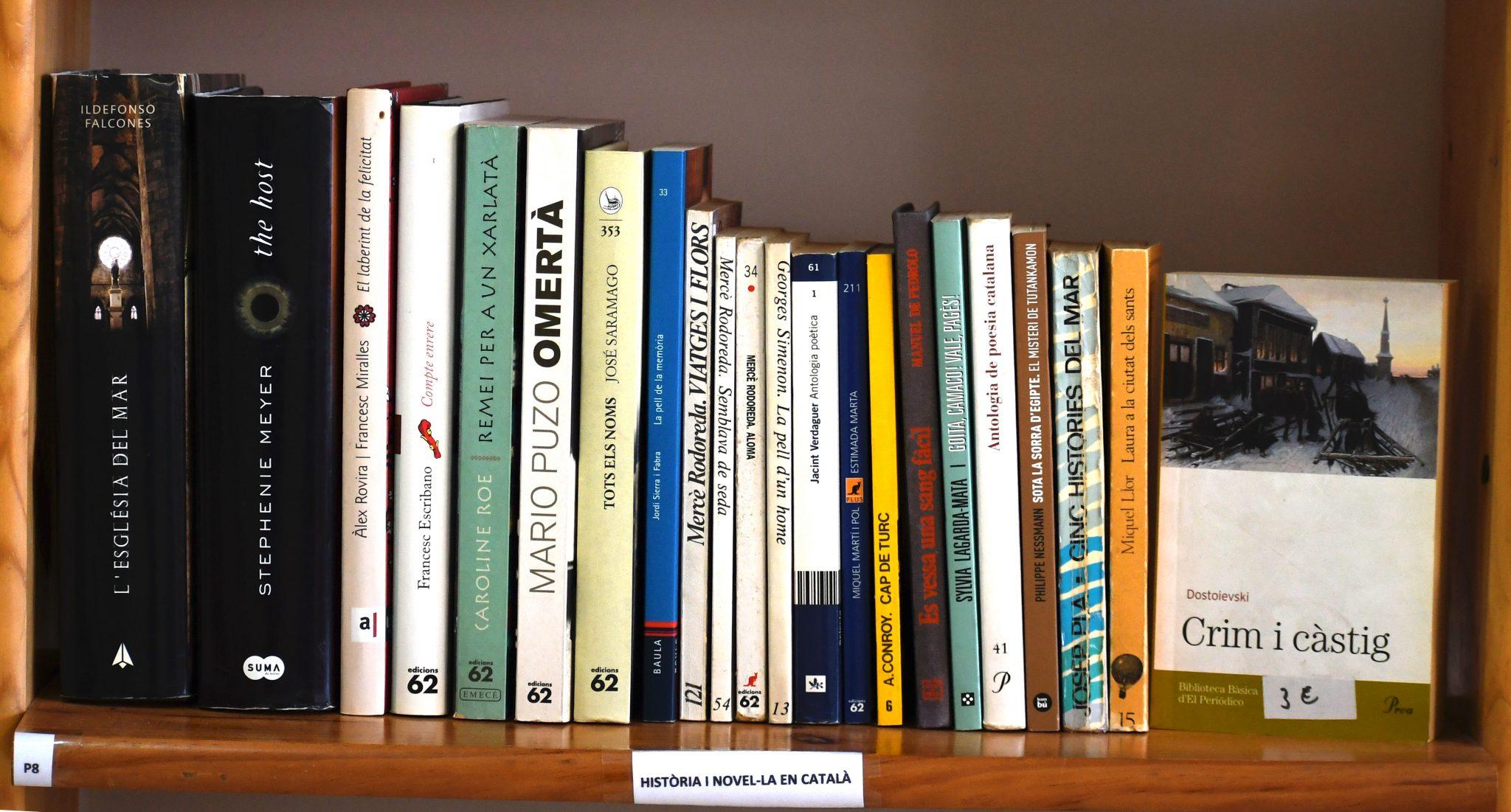 Novel·la en català